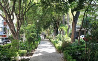 mexico-city-colonia-condesa-LFMEXCITY0517
